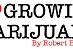 I Love Growing Marijuana Review: A Honest Review