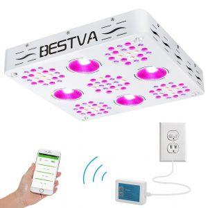 BestVA X5 1000W COB LED Grow Light Review